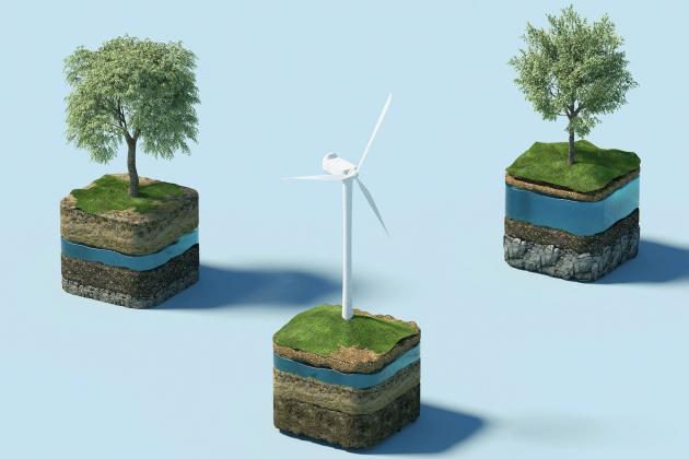 Sustainability_Trees_Windmill
